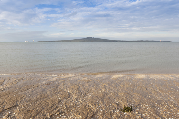 Mission bay view with Rangitoto island background, Auckland, New