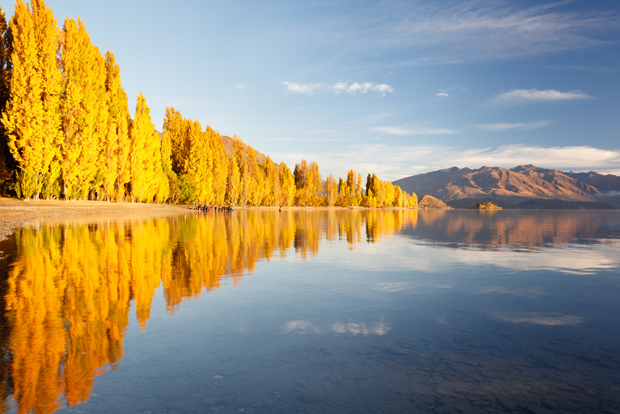 Autumn reflections in Lake Wanaka, New Zealand